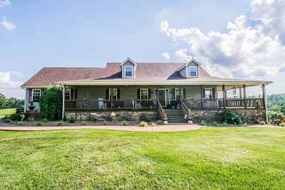 Leitchfield Single Family Home For Sale: 931 Dickeys Mill Rd