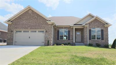 Bowling Green Single Family Home For Sale: 1123 Aristides Drive