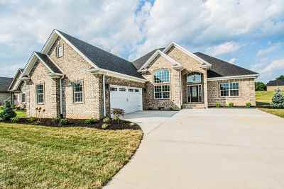 Alvaton Single Family Home For Sale: 374 Old Post Drive