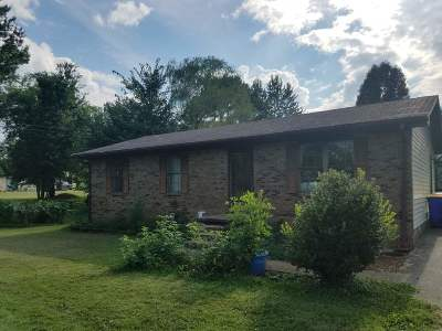 Bowling Green Single Family Home For Sale: 147 Witt Road