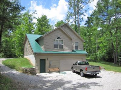 Clinton County, McCreary County, Russell County, Wayne County Single Family Home For Sale: 239 Allison Drive