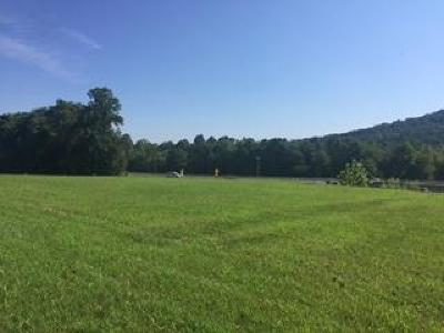 Science Hill KY Commercial Lots & Land For Sale: $75,000