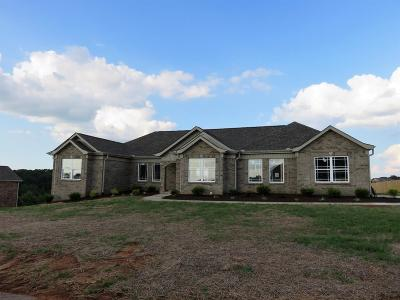 Somerset Single Family Home For Sale: 218 Natures Valley Drive