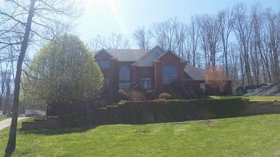 Pulaski County Single Family Home For Sale: 1357 Heather Hills Drive