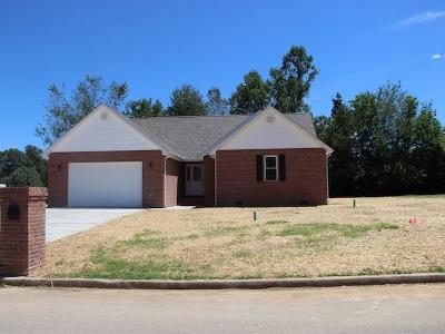 Somerset Single Family Home For Sale: 117 Twin Lakes Drive