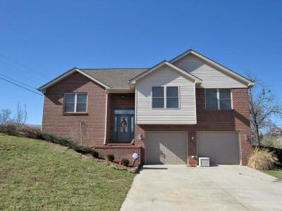 Pulaski County Single Family Home For Sale: 278 Wind Chime