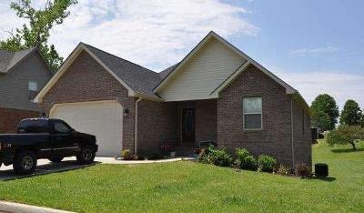 Pulaski County Single Family Home For Sale: 12 Connors Way