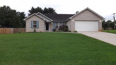 Pulaski County Single Family Home For Sale: 149 Enchanted Drive