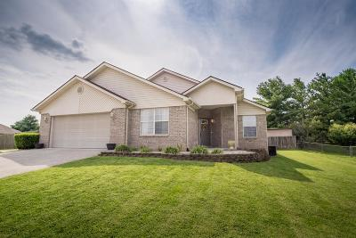 Somerset Single Family Home For Sale: 84 Summit Pointe Drive
