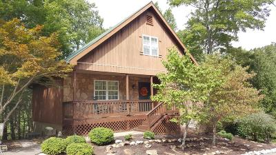 Pulaski County, Wayne County Single Family Home For Sale: 482 Enchanted Forest Way