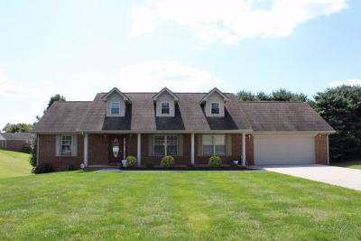 Somerset Single Family Home For Sale: 313 Mountain View Drive