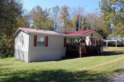 Clinton County, McCreary County, Russell County, Wayne County Single Family Home For Sale: 1145 Ramseys Point Road