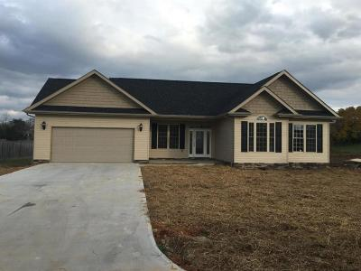 Science Hill Single Family Home For Sale: 16 Independence Way