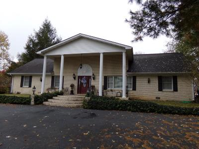 Somerset Single Family Home For Sale: 441 Combs Lane