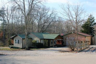 Clinton County, McCreary County, Russell County, Wayne County Single Family Home For Sale: 1045 Ramseys Point Road
