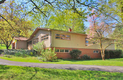Somerset Single Family Home For Sale: 110 Bash Avenue