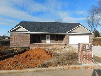 Somerset Single Family Home For Sale: 9 Mountain Air Drive