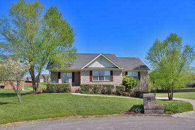 Somerset Single Family Home For Sale: 296 Observation Pointe Drive