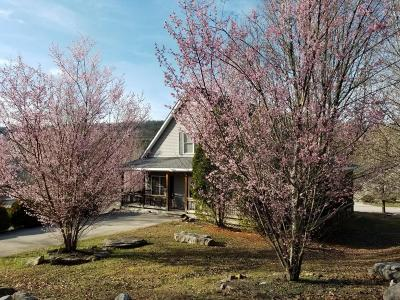 Burnside Single Family Home For Sale: 55 Boone Trail