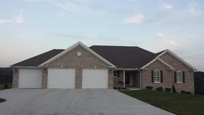 Somerset Single Family Home For Sale: 158 Walnut Ridge Drive