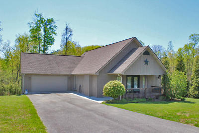 Somerset Single Family Home For Sale: 11 Pride Rock Lane