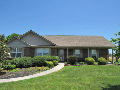 Somerset Single Family Home For Sale: 81 Summit Pointe Drive
