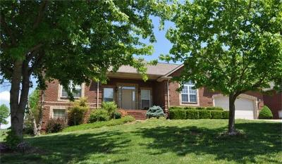 Somerset Single Family Home For Sale: 102 White Tail Run