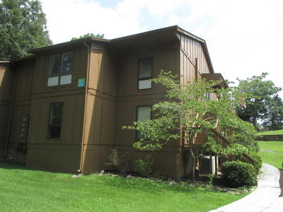 Bronston Condo/Townhouse For Sale: 85-4 Woodson Bend Resort