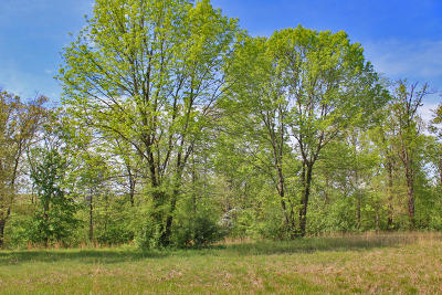 Somerset Residential Lots & Land For Sale: 130 Lake Crest Drive