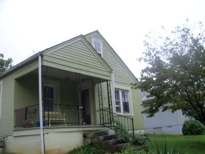 Somerset Single Family Home For Sale: 217 Bourne Avenue