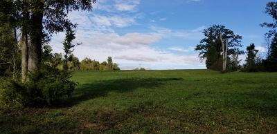 Somerset Residential Lots & Land For Sale: 282 Broyles Rd