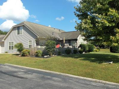 Pulaski County Single Family Home For Sale: 361 Cathedral Place