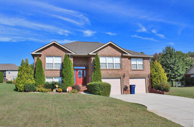 Somerset Single Family Home For Sale: 70 Bradens Way