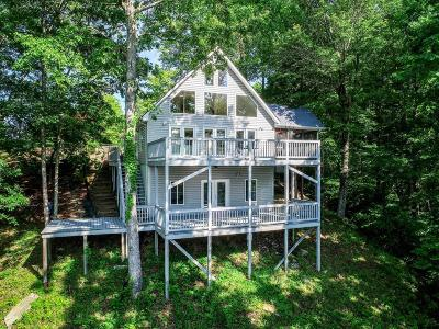 Russell Springs Single Family Home For Sale: 264 Stephens Point Road
