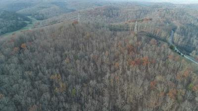 Somerset Residential Lots & Land For Sale: Track 10 Hwy 1643