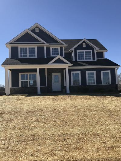 Somerset Single Family Home For Sale: 110 Rugged Peake