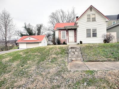 Ferguson Single Family Home For Sale: 204 Brandon Avenue
