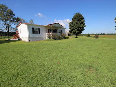 Nancy Single Family Home For Sale: 439 Wolf Creek Road