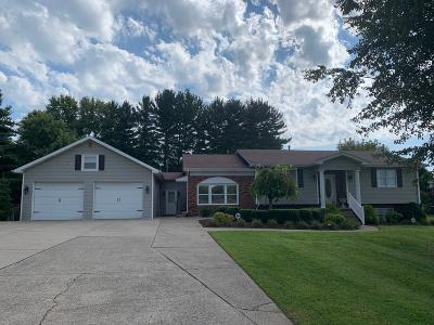 Somerset Single Family Home For Sale: 207 Barnett Street