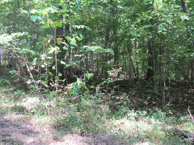 Somerset KY Residential Lots & Land For Sale: $36,000