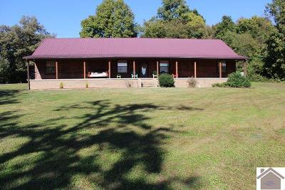 McCracken County Single Family Home For Sale: 3035 Lov Flo Sta Rd West