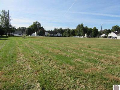 Ballard County Residential Lots & Land For Sale: 118 Britton Dr.