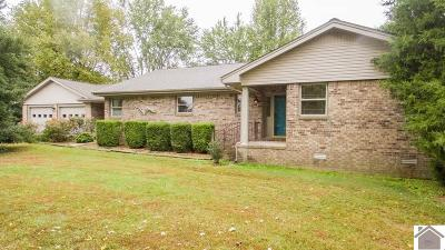 McCracken County Single Family Home For Sale: 265 Orchard View Drive