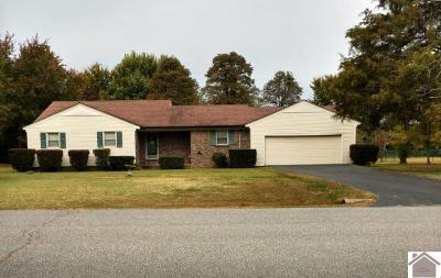 Marshall County Single Family Home For Sale: 822 Parkway Dr