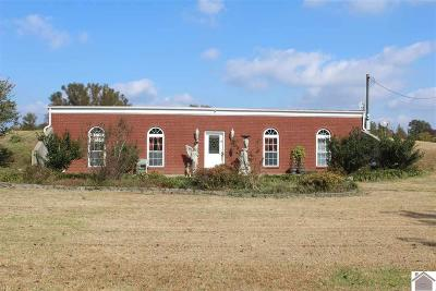 Graves County Single Family Home For Sale: 3455 State Route 944