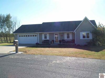 Mayfield Single Family Home For Sale: 273 Chad Dr