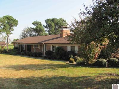 Graves County Single Family Home For Sale: 3937 W St Rt 339