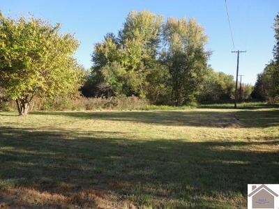Graves County Residential Lots & Land For Sale: 34 Acres Cardinal Road