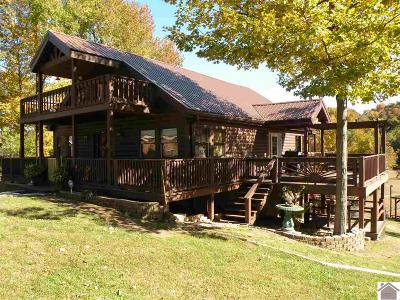 Cadiz, Trigg County, Eddyville, Kuttawa, Grand Rivers Single Family Home For Sale: 83 Laurens Way