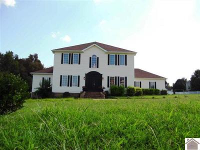 McCracken County Single Family Home For Sale: 340 Harting Ridge Rd
